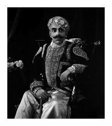 Il nonno dell'attuale Maharana