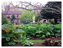 Scorcio del Chelsea Physic garden