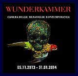 Wundercammer alla Belgica