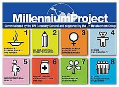 I goals dell millenium Project