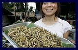 Vermi di bambù fritti