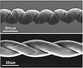 Nano muscoli